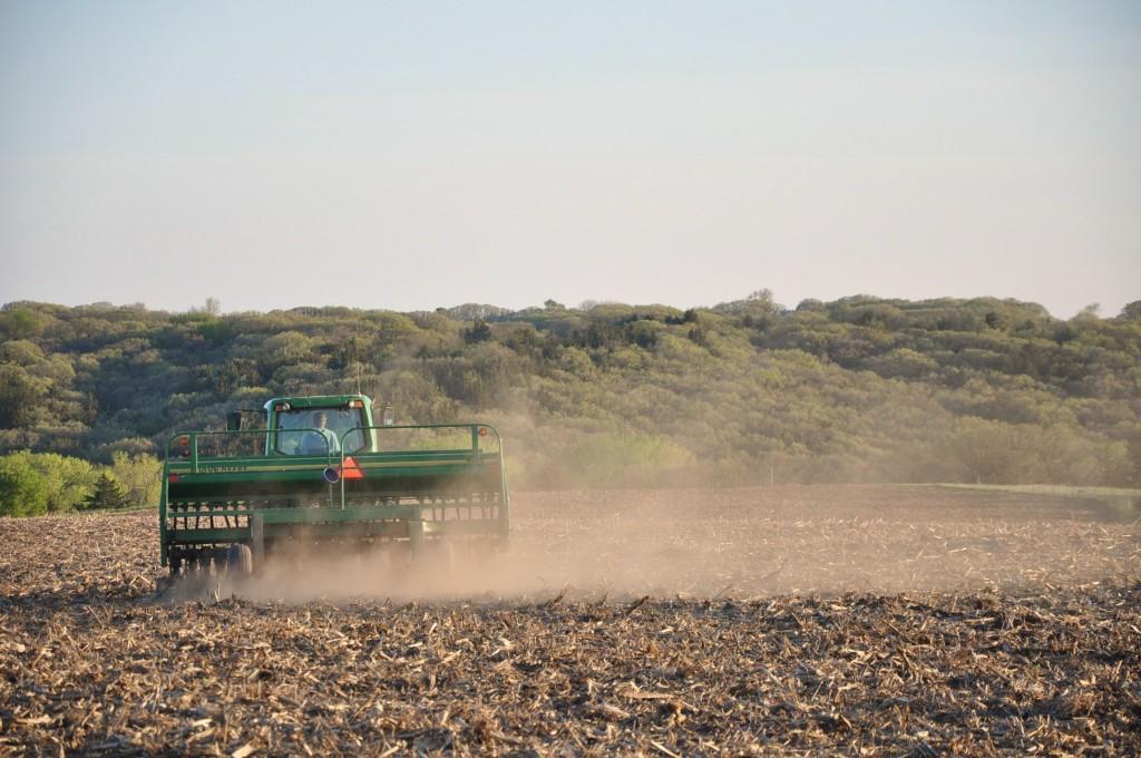 Iowa bean planting