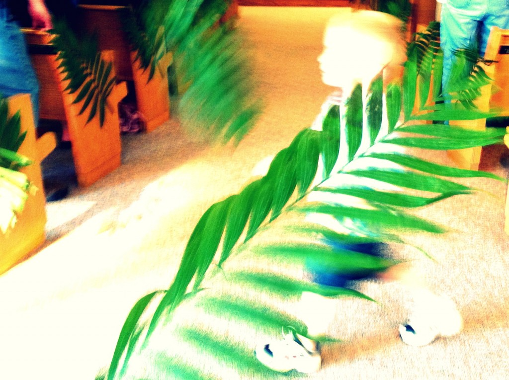 palm branches waving