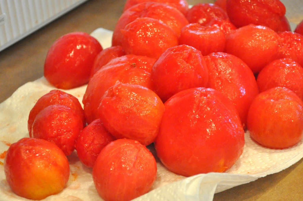 On Suffering and Joy (A Lesson from the Garden Tomato)