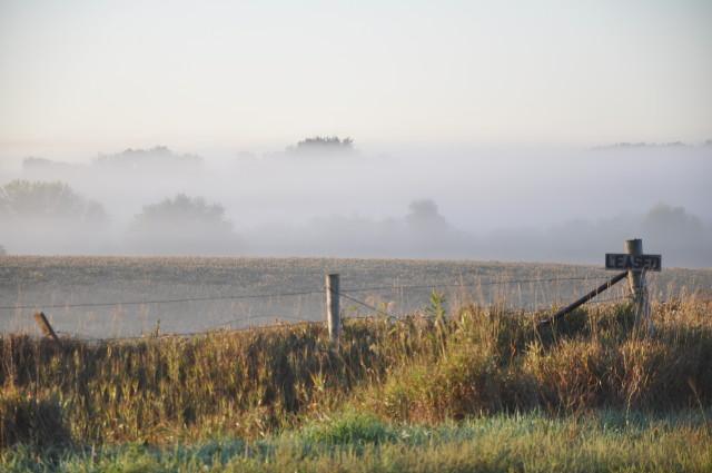 mist in valley