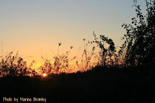 sunsetonhill.marinabromley