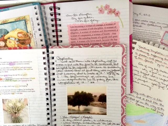 Ditchfield Journals