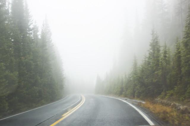 36251_Foggy_road